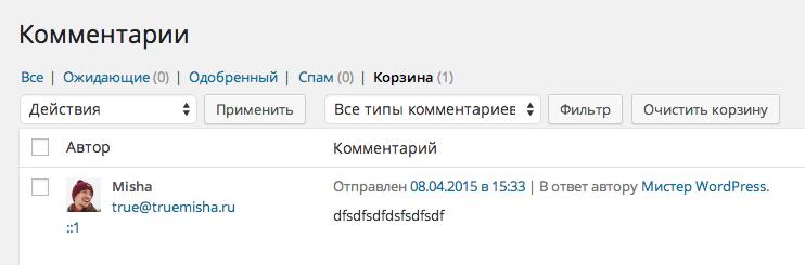 комментарий в корзине WordPress