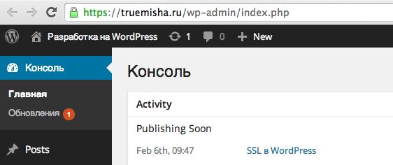 SSL в админке WordPress