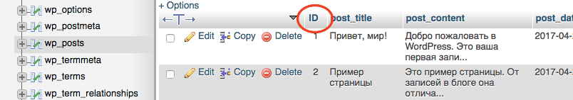 Отображение ID постов в phpMyAdmin