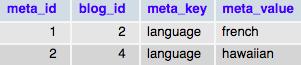 Таблица с метаданными сайтов сети wp_bloegmeta