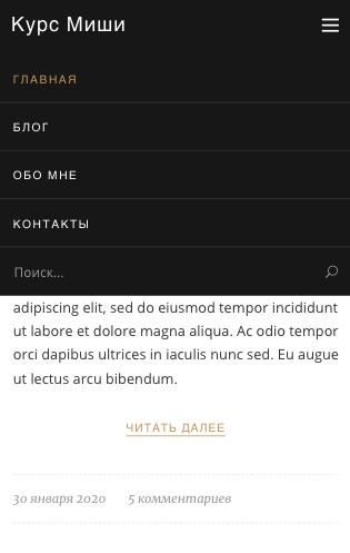 Поисковая форма в мобильном меню