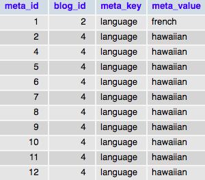 Пример использования функции add_site_meta()