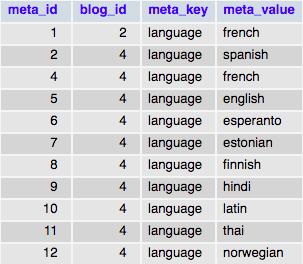 Таблица базы данных wp_blogmeta с данными с одним ключом meta_key и разными значениями meta_value